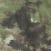Legion Forest